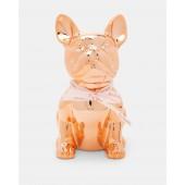 Ted Baker -  Buster - Rosé goud Franse Bulldog spaarpot.